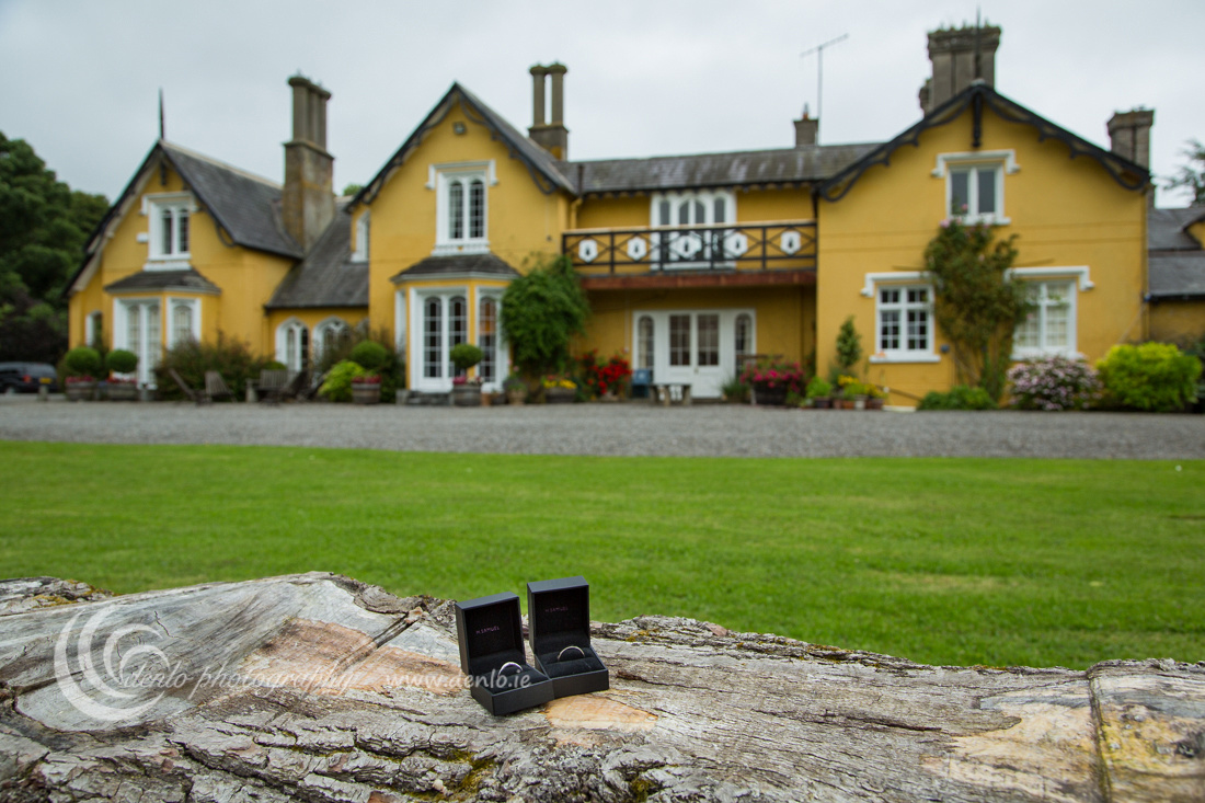The wedding rings in front of the beautiful Martinstown House.