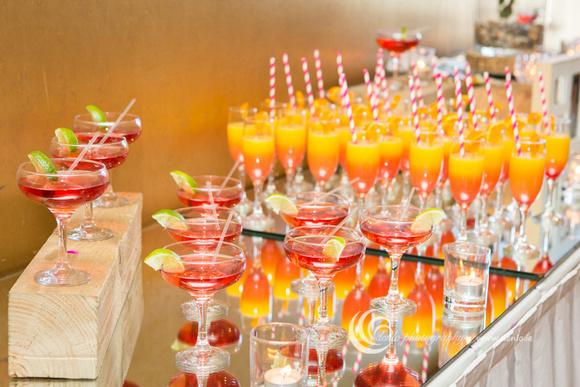 Wedding Drinks Reception-8794