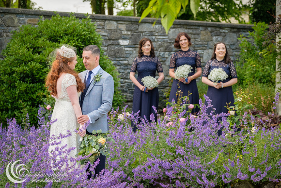 Bridal party at Clonabreany House-4060